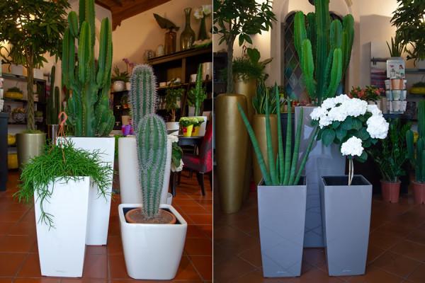 vasi-bianchi-design